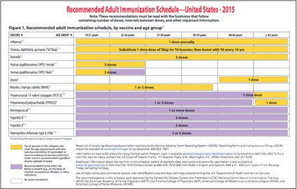 CDC Adult Vaccination Schedule 2015